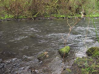 Pic of Sain Creek